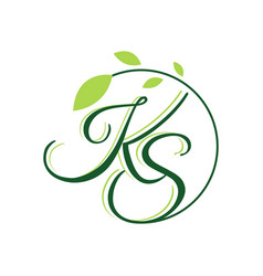 letter k s with leaf logo design vector image