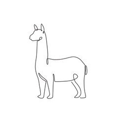 one continuous line drawing elegant llama vector image