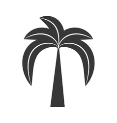 Outline palm tree beach tropical vector