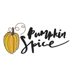 pumpkin spice hand drawn vector image