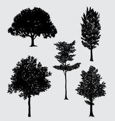 Tree natural silhouette vector