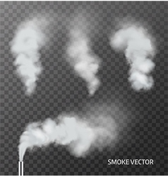 Realistic smoke steam on transparent background vector image vector image
