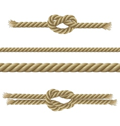 Ropes Decorative Set vector image vector image