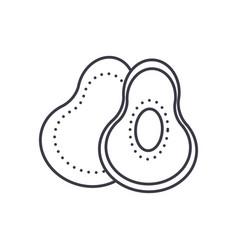 avocado line icon sign on vector image
