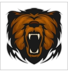 Angry bear head - isolated on white vector