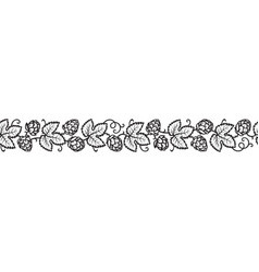 hop branches with cones and leaves seamless border vector image