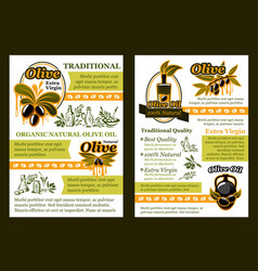 Olive product poster with oil and pickled fruit vector