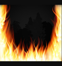 trees on fire fire burning fire special light vector image