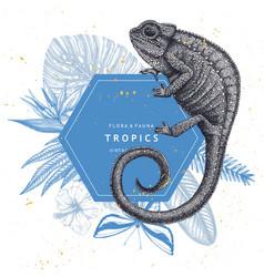 tropical banner design realistic chameleon vector image