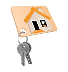 Two keys vector image vector image
