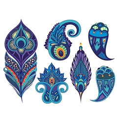 Collection of peacock elements vector image vector image