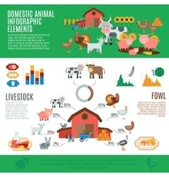 Domestic animals infographics vector
