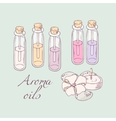 Aromatherapy oils for spa hand drawn vector image