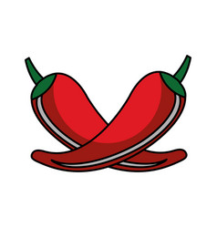 Chilli pepper isolated icon vector