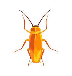 Cockroach insect colorful cartoon character vector