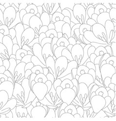 crocus flower outline seamless background vector image