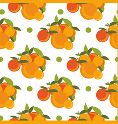 peaches and apricots seamless vector image