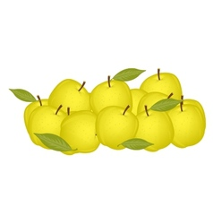 Small circle yellow apple vector image