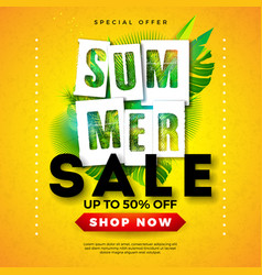 summer sale design with tropical palm leaves vector image