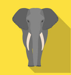 the elephant the biggest wild animal african vector image