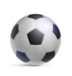 classic soccer ball realistic isolated vector image vector image