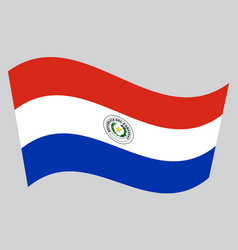flag of paraguay waving on gray background vector image vector image