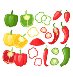Cartoon peppers sweet red yellow and hot peppers vector