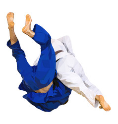 Fighter judo throw for ippon vector