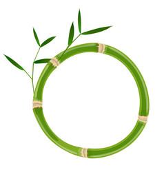 Green bamboo circle frame vector