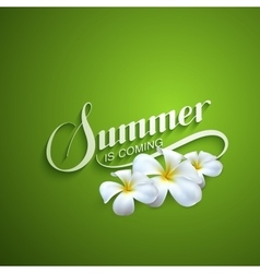 handwritten Summer retro label vector image