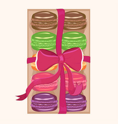 macaroons in a box vector image