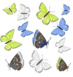 set white yellow blue butterflies lycaenidae vector image