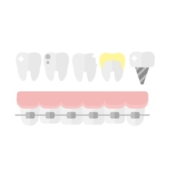 Teeth dental mouth with care braces vector