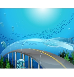 Glass tunnel under the ocean vector image vector image