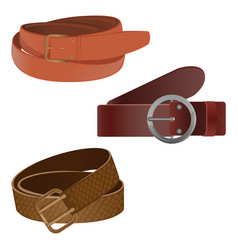 set of leather waist belts isolated modern unisex vector image vector image