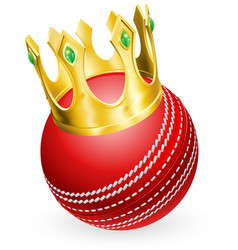 king of cricket vector image vector image