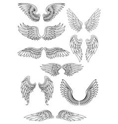 Heraldic bird or angel wings set vector image vector image