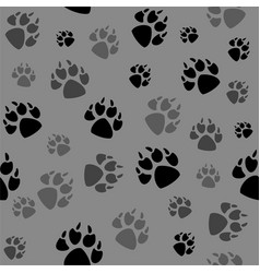 Animal black foots and wildlife vector