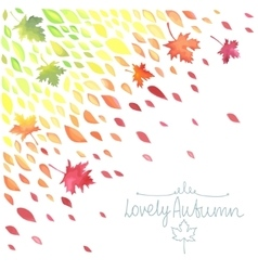 Autumn A rain of colored leaves vector