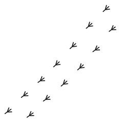 Bird feet toe trail trace track sign symbol vector
