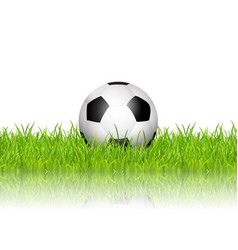 Football soccer ball in grass on white background vector