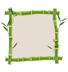 Green bamboo frame vector