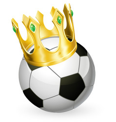 king football soccer vector image