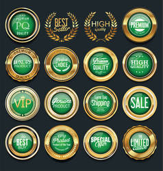 Luxury golden design badges and labels collection vector