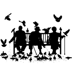 Pigeon feeders vector image