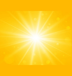 Sun with lens flare abstract summer yellow rays vector