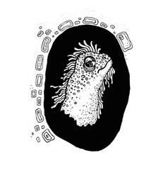 iguana face black and white vector image