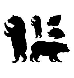 Bear design vector image
