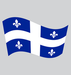 Flag of quebec waving on gray background vector