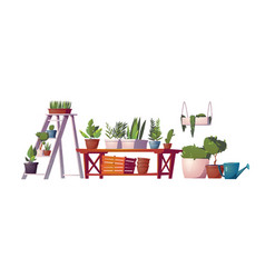 greenhouse plants orangery floristic store stuff vector image